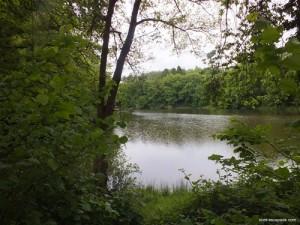 Photographie de l'étang de la galoperie