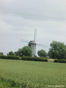 Le moulin den Leeuw - Pitgam_GF
