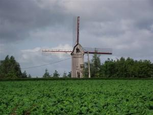Photographie du drievenmeulen de steenvoorde, moulin sur pivot datant du 18ème siècle