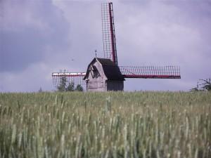 Photographie du DrievenMeulen, peinant à cacher ses ailes derrière la verdure et les champs.