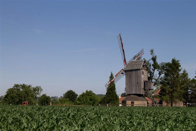 Photographie du moulin d'Houtkerque.
