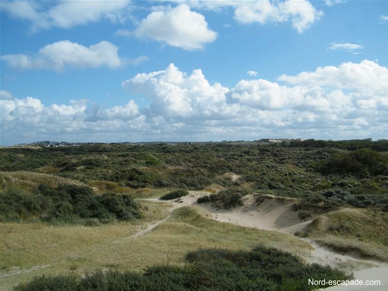 La dune du Perroquet: un paysage somptueux propice à la contemplation