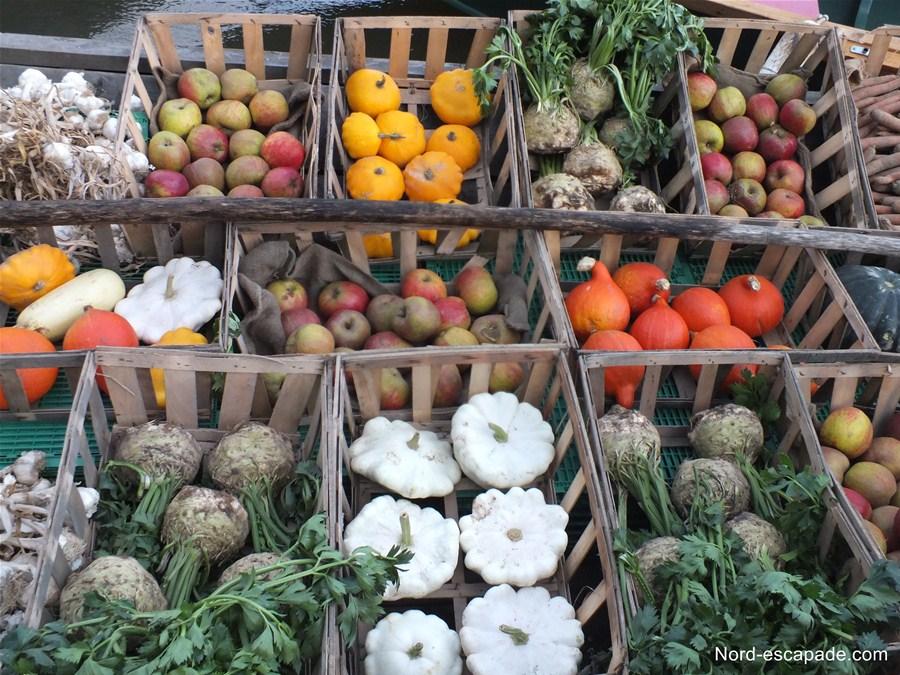 De beaux légumes sur les bacôve