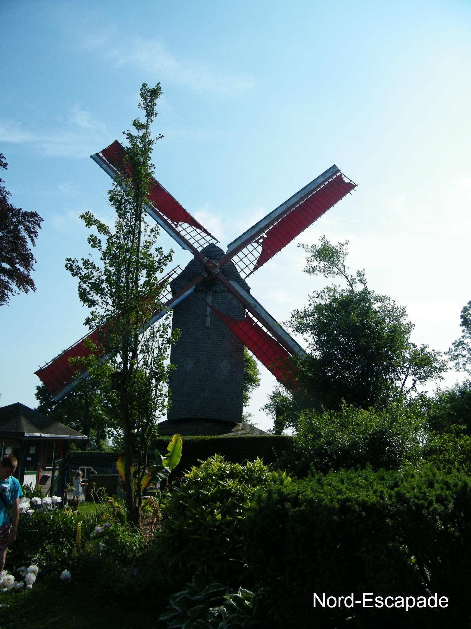 Le moulin de Cassel, dit, Kasteelmeulen