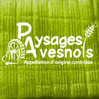 Paysages Avesnois