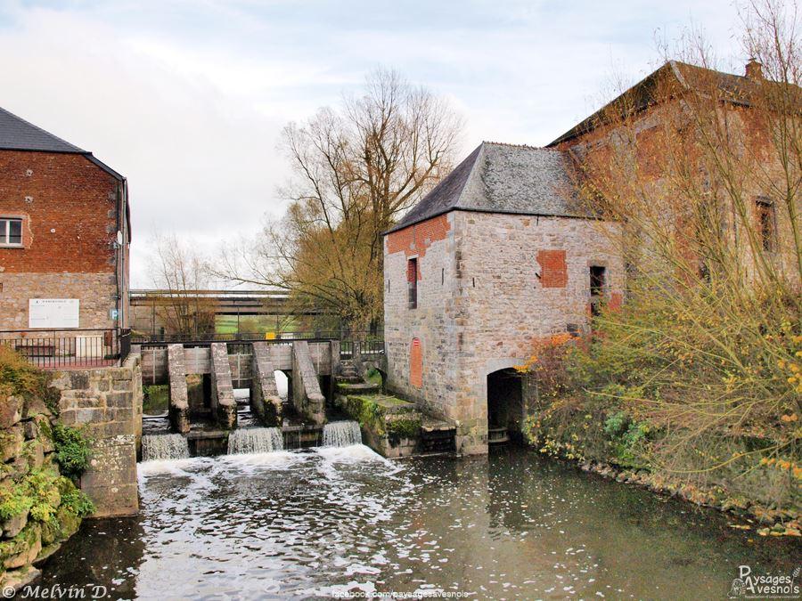 Moulin etroeungt - Paysage avesnois