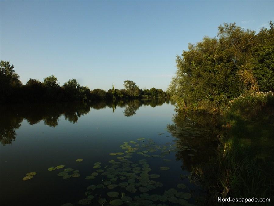 Les étangs du Romelaere