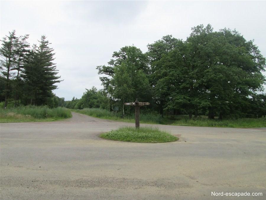 Le rond point du Rostat ou carrefour des 8 chemins - Forêt de Clairmarais