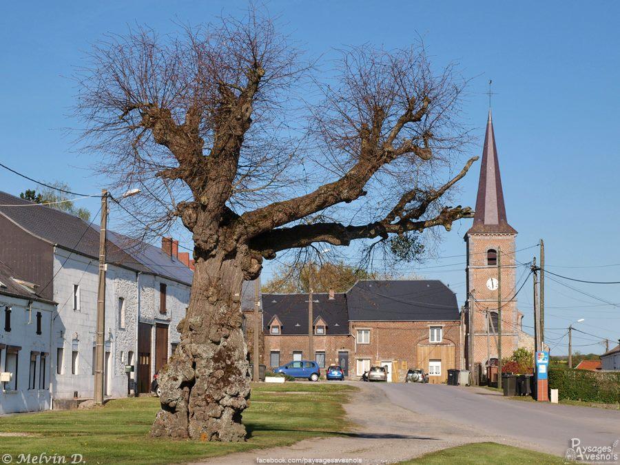 L'église Saint-Martin d'Obrechies