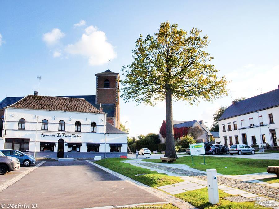 L'église Saint-Quentin et l'arbre datant de 1789 de Gognies-Chaussée