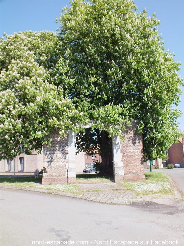 L'un des vestiges de porte fortifiée à Aire